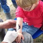Hoppegarten war begeistert von den Spass Tattoos