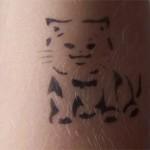 Airbrush Spass Katze