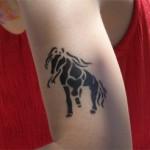 Kinder-Pferde Airbrush Tattoo